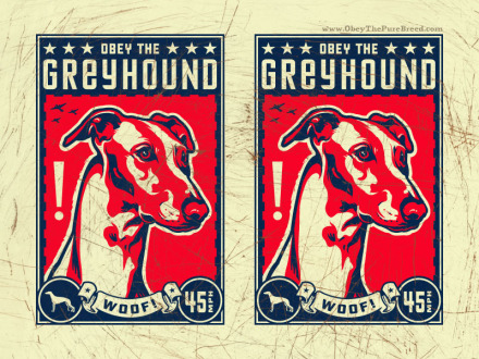 obey the greyhound dog wallpaper